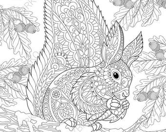 Adult Coloring Pages Squirrel Zentangle Doodle Book For Adults Digital Illustration