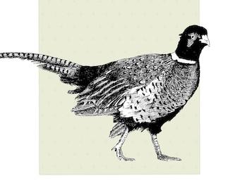 Pheasant card | Pheasant greeting card | Pheasant art |