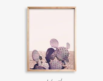 Cactus Print Art, Succulent Print, Cacti Print, Cactus, Botanical Print, Cactus Art, Cactus Photo, Cactus Printable, Cactus Desert Print