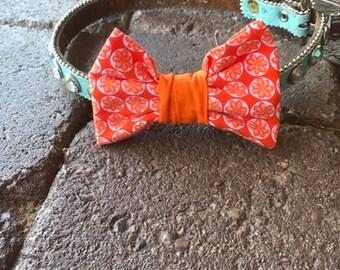 Orange Flower Print Medium Bow Tie