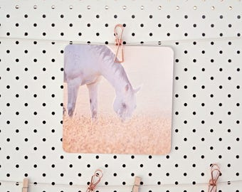 white horse photograph, horse photography, horse wall art, horse print, boho wall art, boho wall print, rustic wall print, farmhouse decor