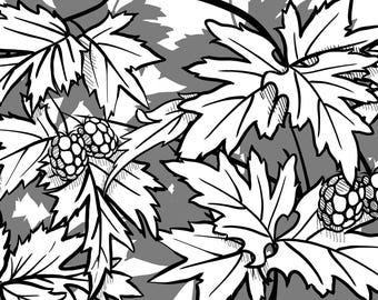 Blackberries - Furniture Decoration