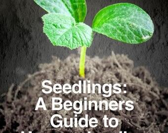 EBOOK- Seedlings: A Beginners Guide to Homeschooling