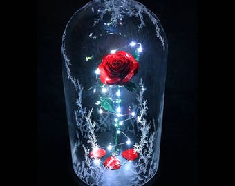 Beauty And The Beast Rose Enchanted Preserved Wedding Decor Engagement