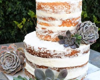 10 Succulent cuttings for your wedding cake. You can choose color. All one color, or colors. Your choice.