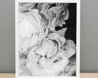 Black and White Flowers Printable Art