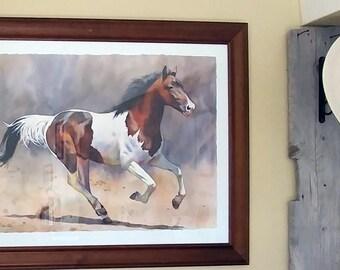 Gallop Happy!