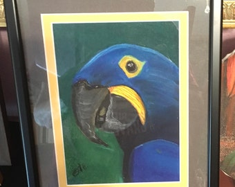 Framed & Matted Pastel Blue Macaw