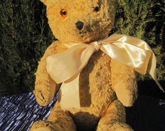 Danny - 1940s Polish bear