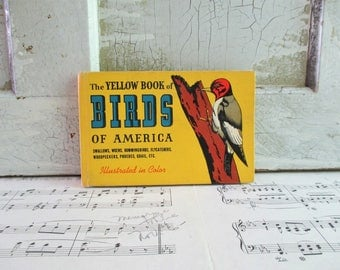 Vintage Guide - The Yellow Book of Birds of America 1951