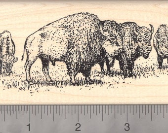 American Bison Herd Rubber Stamp L7111 Wood Mounted