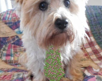 Christmas Dog Neck Tie Featuring Candy Canes