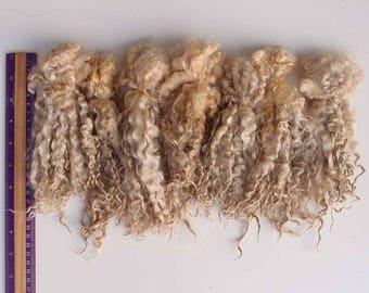 Leicester longwoll raw wool long locks 15-20 cm, 3,5 oz ( 100 gr) unwashed white fiber, Doll Hair, felting, spinning, lock spin.