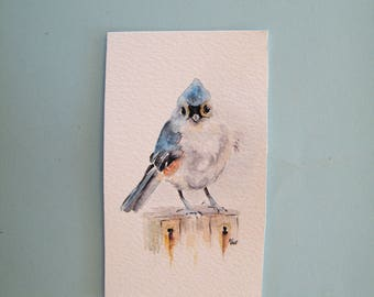 Titmouse watercolor,  original painting,  miniature art,  titmouse aceo,  small bird wall art,  little titmouse art, garden bird,  blue bird