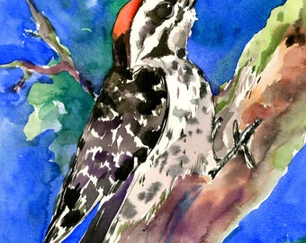 Downy Woodpecker, bird artwork bird art woodpecker gift, original art, Woodland, wild birds, woodpecker art, bird lover gift
