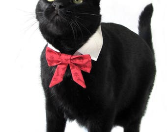 Red Pawprint and Bones Bow Tie, Necktie, or Bow on a Shirt Style Collar for both Dogs & Cats