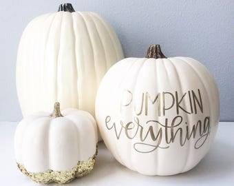 Calligraphy Pumpkin, Hand Lettered Pumpkin, Fall Decor, Fall Pumpkin, Pumpkin Decor, White Pumpkin Decor, Pumpkin Everything, Thanksgiving