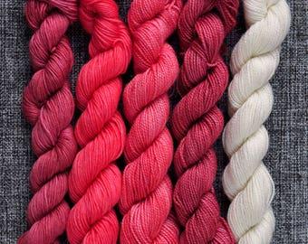 Snowberries 5 x mini skein set yarn hand dyed skeins