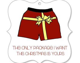 Funny Christmas Ornament For Boyfriend - Funny Christmas Ornament For Husband, The Only Package I Want This Christmas Is Yours