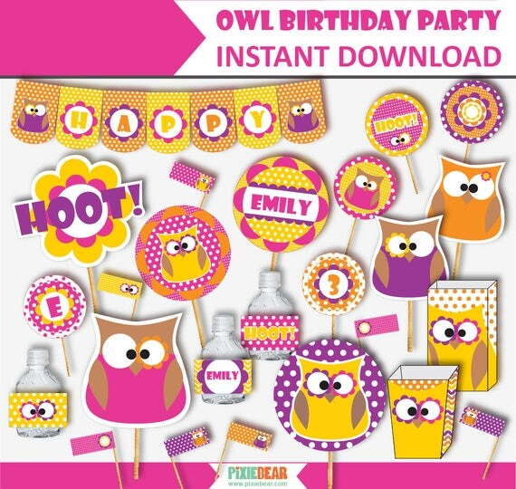 Owl Birthday Owl Party Owl Party Decorations Girl Owl