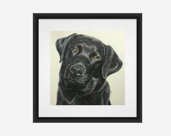 Black Labrador Retriever Fine Art Giclee Print by Gillian Ussher Art // Black Lab // Dog Art // Labrador Gift // Signed and Numbered