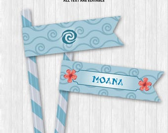 Moana Straw Flags