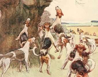 "Cecil Aldin Dog Print ""White Ear and Peter"" (1912) No:14 of 15"