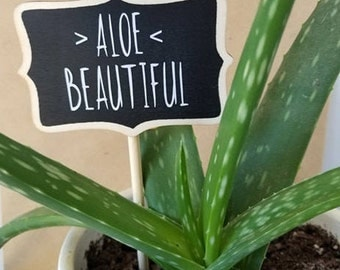 ALOE Beautiful Plant Marker