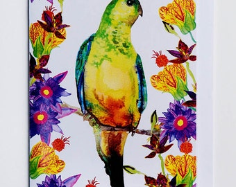 Tropical Parrot Greetings Card