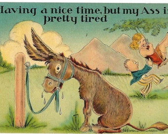 donkey jackass drinking humor postcards download 1940s