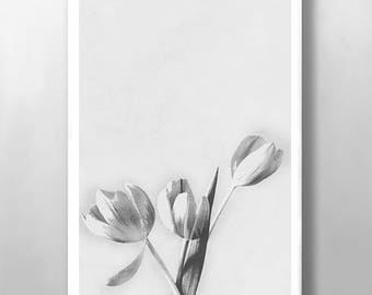 Floral Print, Wall Art, Tulip Flower Print, Botanical Print, Vintage Wall Art, Black an White Print, Abstract Flower Print, Kitchen Wall Art