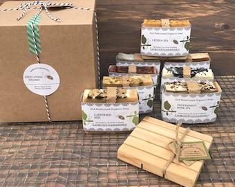 BEER LOVER'S Delight+Organic Craft Beer Soap+Mens Gift Set+Gift For Men+Beer Gift+Mens Soap Set+Manly Gift+Organic Soap Gift Set+Beer Soap