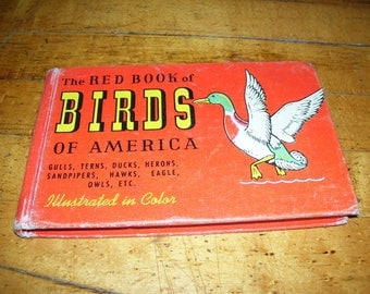 The Red Book of Birds of America by Frank Ashbrook  Whitman Pub 1961 HC Vintage