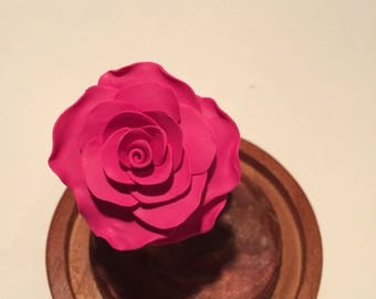 Beauty and the Beast rose, beauty and the beast, pink rose,enchanted rose, rose in glass,  forever rose, fairy tale