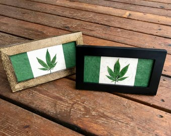Pressed Cannabis Leaf Framed Artwork Flag; Available in Black and Walnut Frame. Comes with dowel and sawtooth hook. 'Medicine & Destiny'