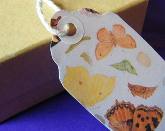 Ten Large Handmade Butterfly Wings Gift Tags - Early 20th Century Children's Book Illustrations - Insects/Natural History/Caterpillars