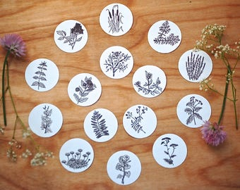 WILDFLOWERS & HERBS 15 Hand Drawn Stickers With Bookmark, Botanical Stickers,  Nature Stickers, Planner Stickers, Floral Stickers