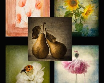 5 square mini cards, flowers, ladybird, pears, classic, nature, mixture, envelopes, Greeting Card, Gift Card, Creative Fine Art Photography
