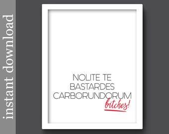 Nolite Te Bastardes Carborundorum, Printable Wall Art, The Handmaid's Tale, quote download, movie quote, tv quote, feminist, girl dorm door