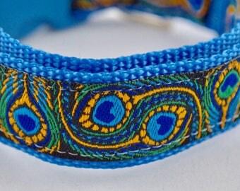 Peacock Feather Design Dog Collar