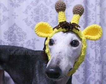 Giraffe Snood for Greyhounds
