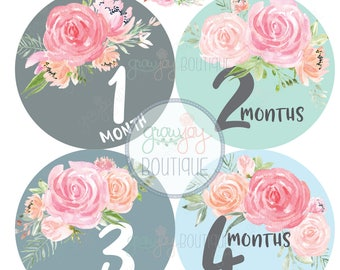 Baby Girl Monthly Stickers    Roses Monthly Milestones    Flowers, Floral, Pastel, Rustic, Wreathes, Bouquets, Foliage, Roses