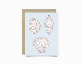 Greeting card - Seashells