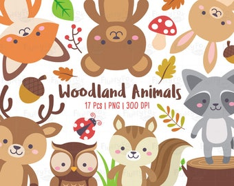 Woodland Animals Clipart, Forest Animal Clip Art, Wild Cute Colorful Fox Deer Squirrel Raccon Rabbit Owl Deer Bear Graphic PNG Download