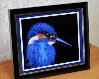 Kingfisher Framed print of a incredibly detailed Oil painting, gift for him gift for her, birdwatcher, wildlife painting,Fine art Kingfisher
