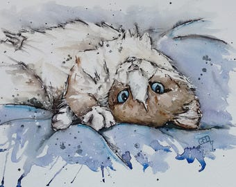 Ragdoll cat art original watercolour painting one off cute kitten art,, an original watercolour painting of a playful ragdoll kitten