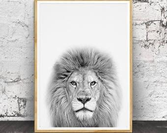 Lion Print, Nursery Prints, Nursery Animal Print, Nursery Animals, Nursery Wall Art, Baby Animal Print, Baby Room Decor, Baby Animals