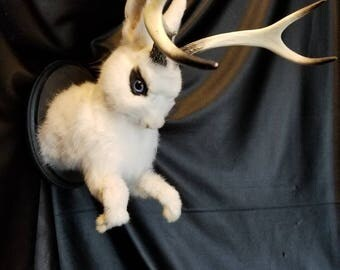 Black and White Jackalope