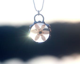 Anemone terrarium necklace Pressed wild wind flower Glass talisman Tiffany jewelry Natural Rustic Forest Flower necklace Spring white flower