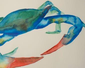 Blue crab watercolor